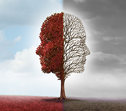 Patient-Centered Maintenance Treatment Plans for Bipolar I Disorder